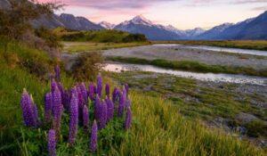 Een groothoekopname van een landschap in Nieuw-Zeeland, gemaakt met een klein diafragma van f11
